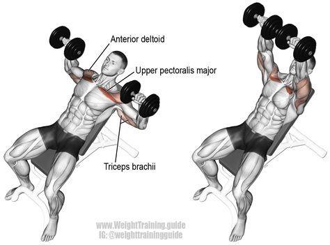 Bí quyết siết cơ đơn giản và hiệu quả cho người mới tập